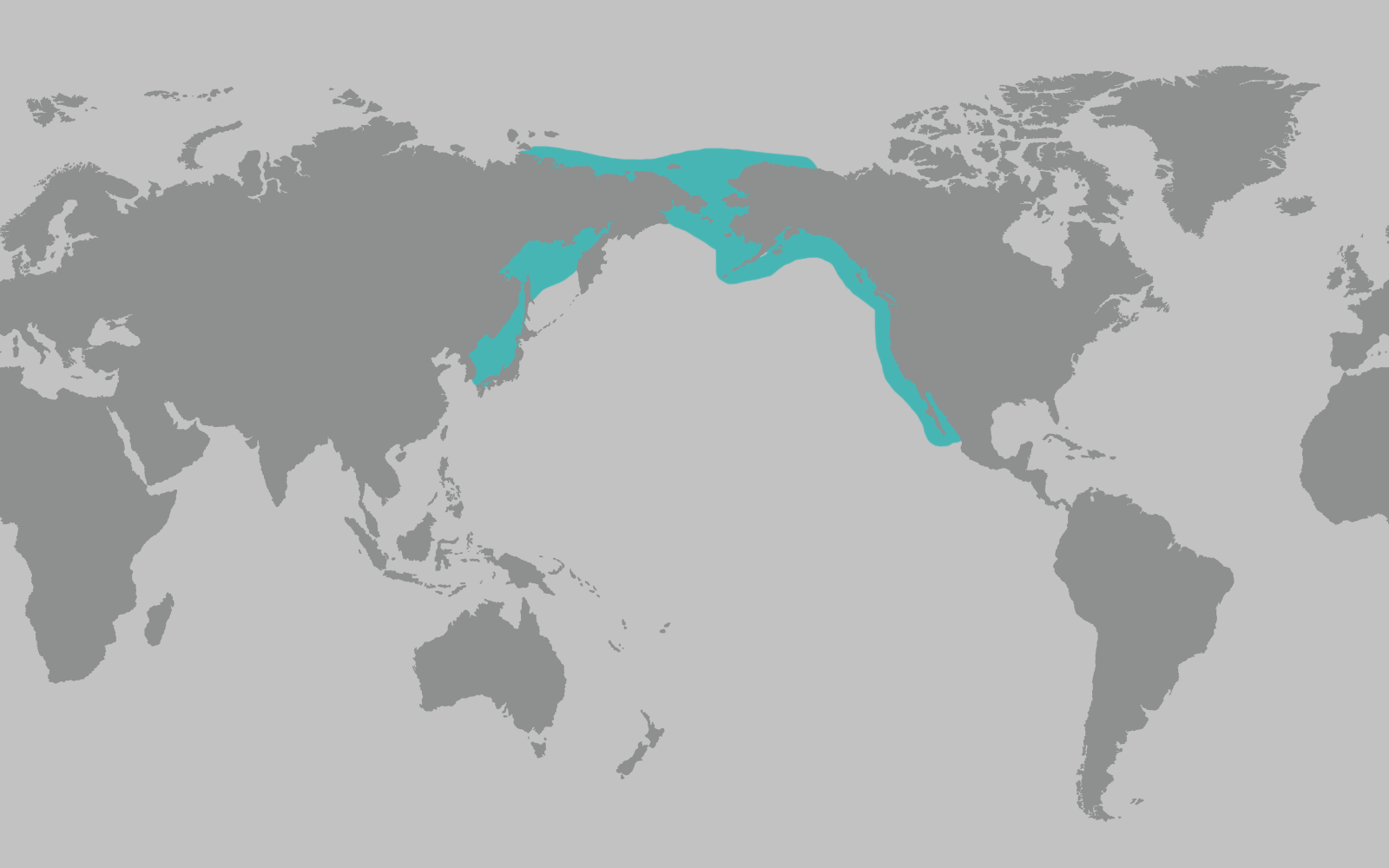 Gray Whale Range Map