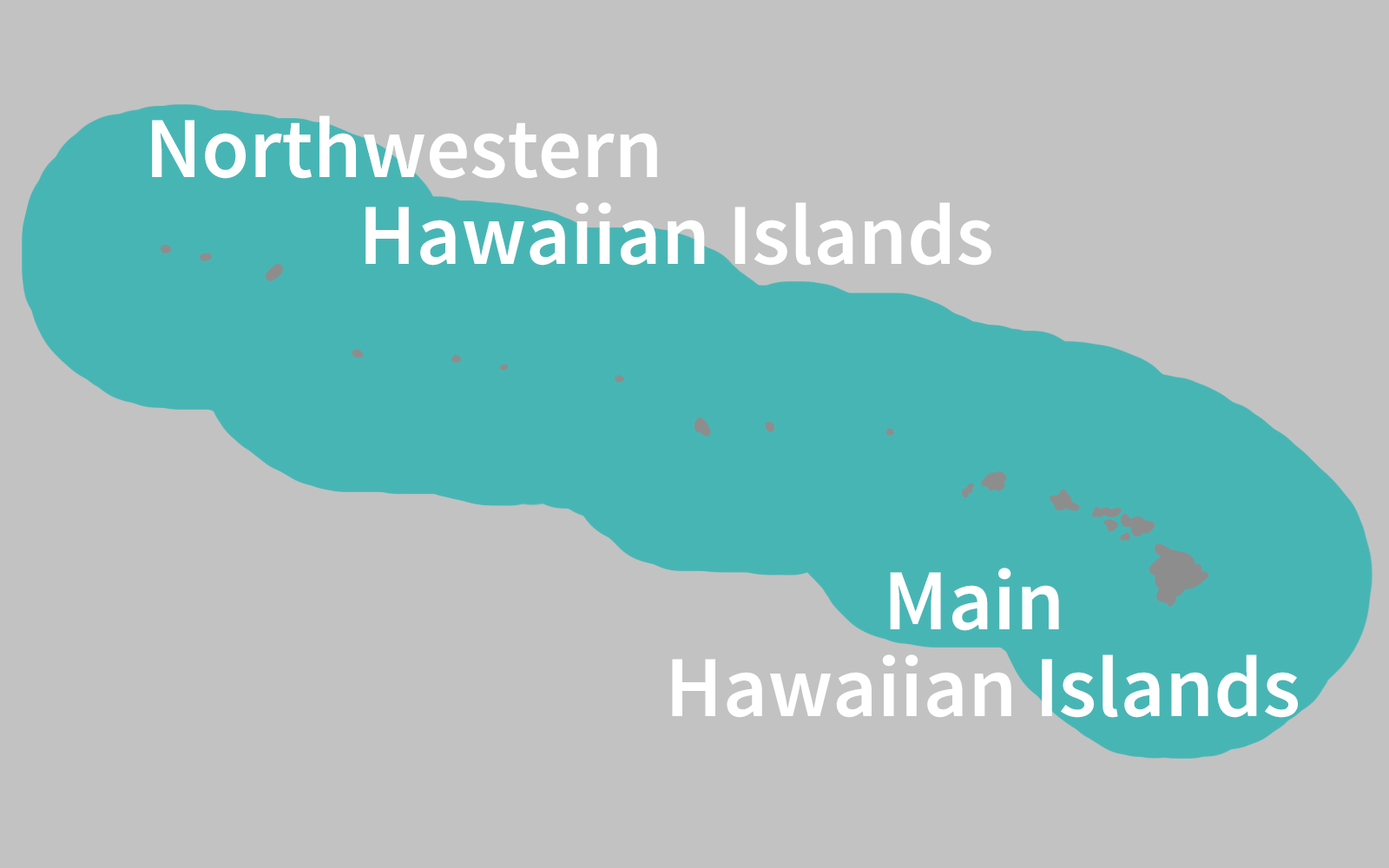 Hawaiian False Killer Whale Range Map