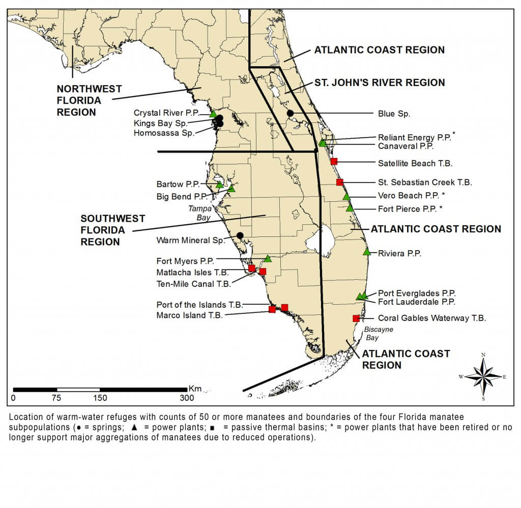 Manatees And Warm Water Refuges Marine Mammal Commission