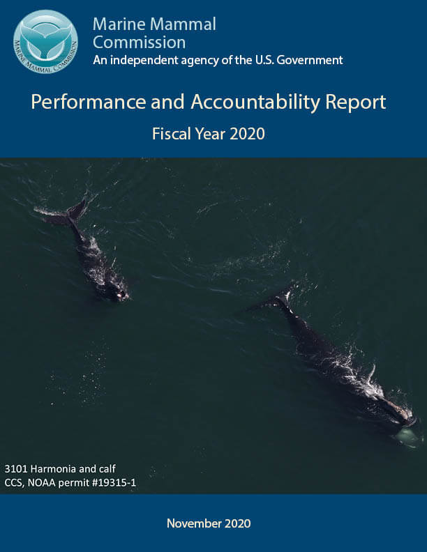 FY 2020 Performance and Accountability Report Image