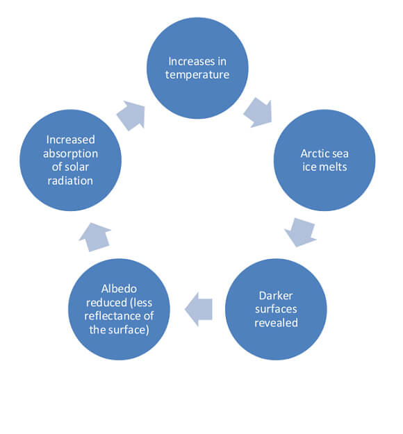 Schematic showing the ice albedo feedback which can lead to amplification of warming in the Arctic.