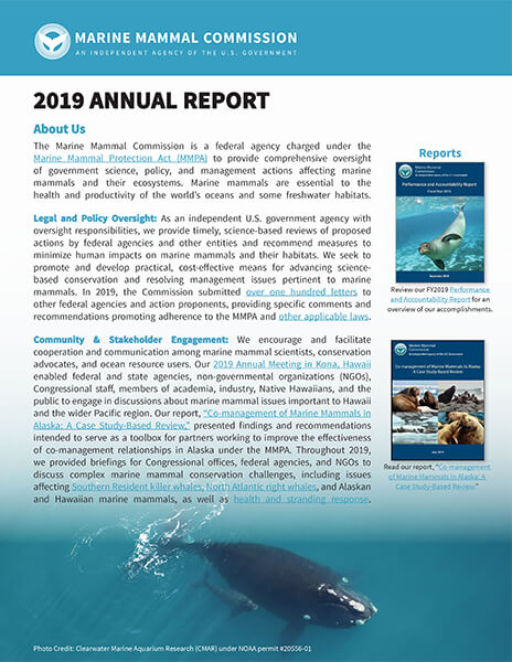 Cover of MMC's 2019 Annual Report