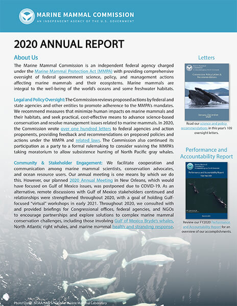 Cover of MMC's 2020 Annual Report